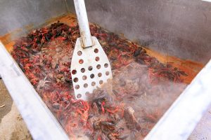 Crawfish boil by the bayou